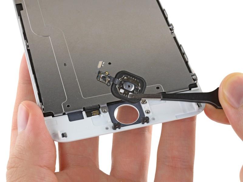 Nút home không bấm được gì, bấm lúc được lúc không: nút home iPhone 6 Plus đã bị hỏng
